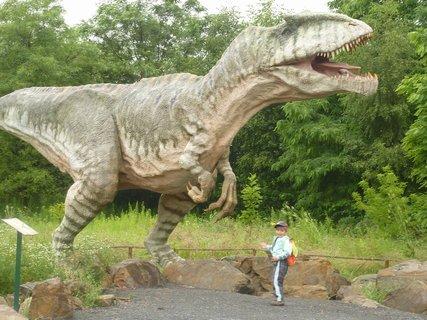 FOTKA - S dinosaurem III
