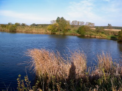 FOTKA - -Podzim u vody