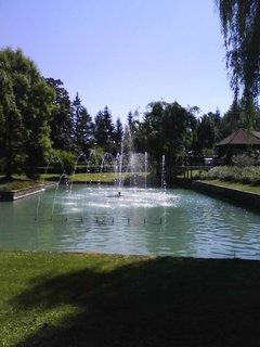 FOTKA - Zoo Lešná.