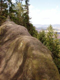 FOTKA - vrchol Ovčína tvoří tento skalní hřeben připomínající třeba ležícího krokodýla :-)