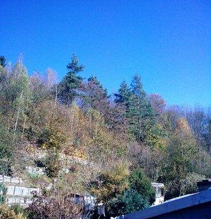 FOTKA - Podzimní den