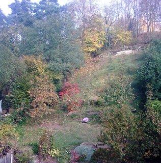 FOTKA - Barvy podzimu 1
