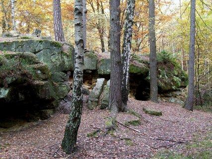 FOTKA - Zastávka v lese