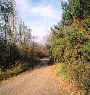 FOTKA - Cesta do polí