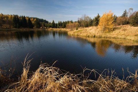 FOTKA - Černý rybník-