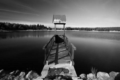 FOTKA - U Starého rybníka