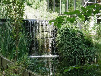 FOTKA - vodopádek v zoo