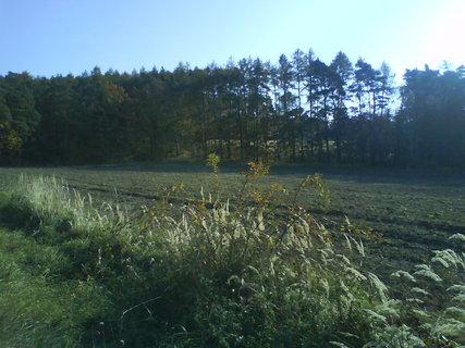 FOTKA - podzimní.krajina