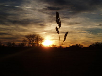 FOTKA - Klas + zapadající slunce
