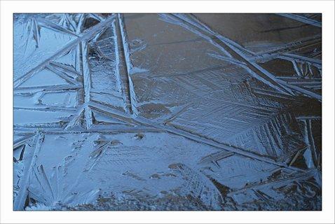 FOTKA - zamrzlá louže na dvoře