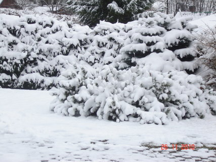 FOTKA - zima2