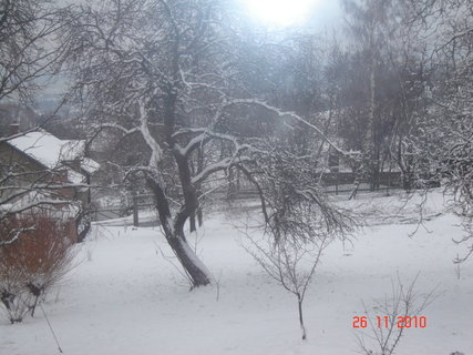 FOTKA - výhled z okna1