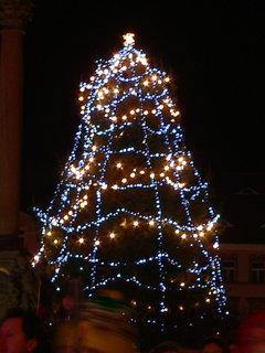 FOTKA - Vánoční strom Č.L.