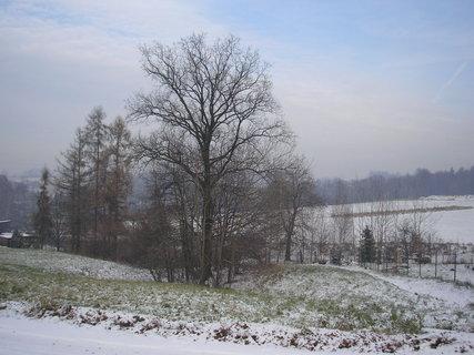 FOTKA - Pohled na zimu