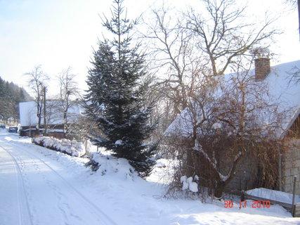 FOTKA - zima,sníh