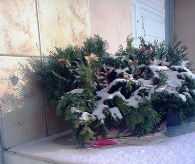 FOTKA - Zimní výzdoba