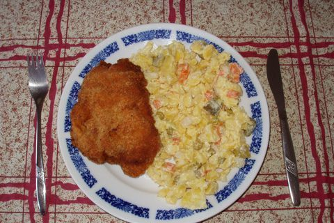 FOTKA - dobrou chuť - řízek a salát