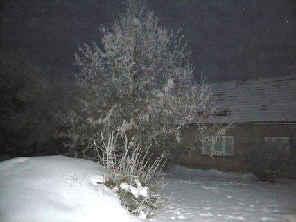 FOTKA - prosinec 2010..........