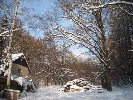 FOTKA - zima dnes4
