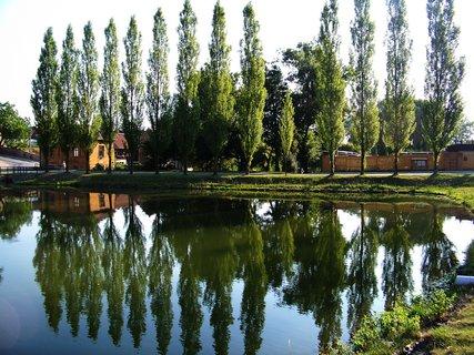 FOTKA - vzpomínky na léto, rybník v Buštěhradu