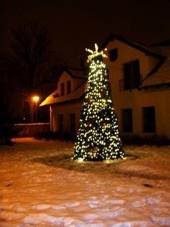FOTKA - vánoční stromek v Kunraticích...