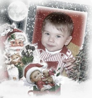 FOTKA - Neluška ve vánočním ...