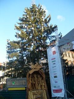 FOTKA - Vánoční strom