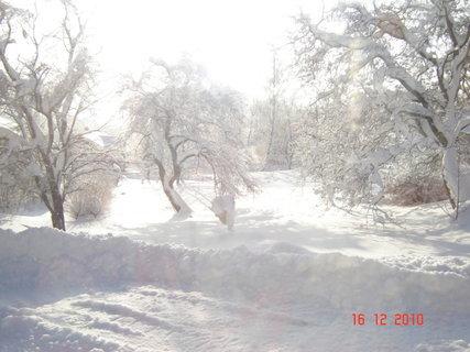 FOTKA - zima-výhled z okna