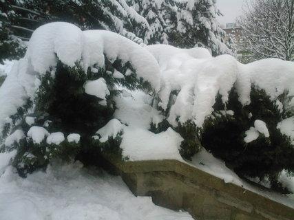 FOTKA - Už tam ten sníh skoro není..