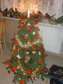 FOTKA - vánoce 2010
