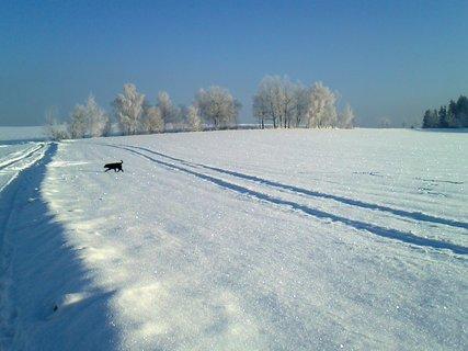 FOTKA - Zimní procházka ,
