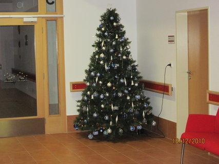 FOTKA - Vánoční stromeček v Domově pro seniory