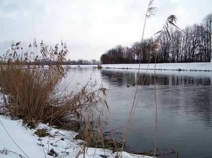 FOTKA - Lednová procházka