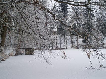 FOTKA - pod dubem 3