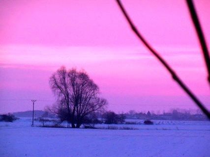 FOTKA - Lednové svítání--