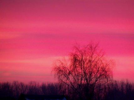 FOTKA - Lednové svítání---