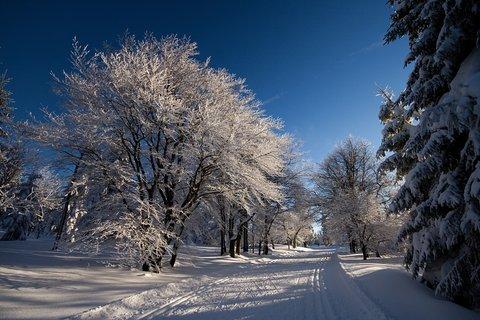 FOTKA - Krušnohorská bílá stopa