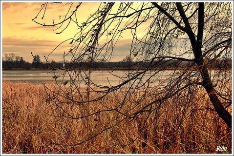 FOTKA - nad rybníkem -