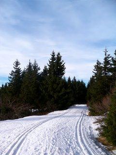 FOTKA - Hurá na procházku na čerstvém horském vzduchu