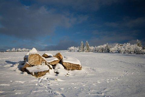 FOTKA - Lesenská pláň