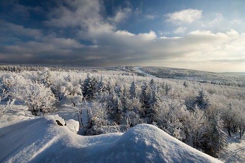 FOTKA - Výhled na Lesnou