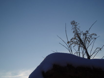 FOTKA - v zimě ....