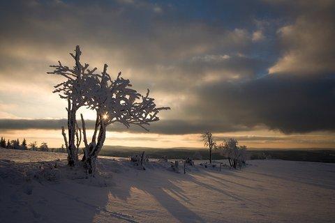 FOTKA - Na Lesenské pláni
