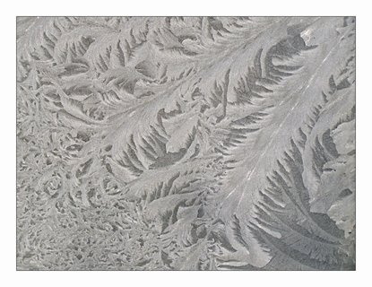 FOTKA - zatím co doma to kvete,venku mrzne o stošest