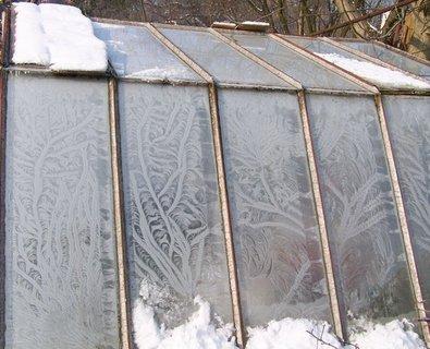 FOTKA - Obrázky na skleníku,každý den jiné