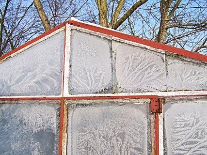 FOTKA - skleníkové ledové obrázky
