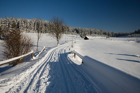 FOTKA - Schwarzwassertal