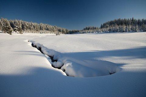FOTKA - V údolí Schwarzwassertal