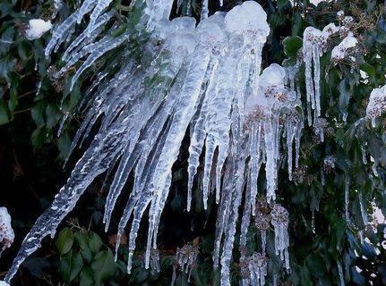 FOTKA - Trocha studeného a pichlavého ledu z rozbitého okapu