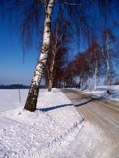 FOTKA - Na Vysočině se silnice jen pískují